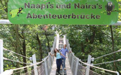 Abenteuerbrücke auf dem Baumwipfelpfad Bad Harzburg