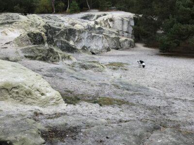 Sandhöhlen_1 (2)